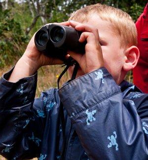 Binocularsdreamstime_14972786.jpg