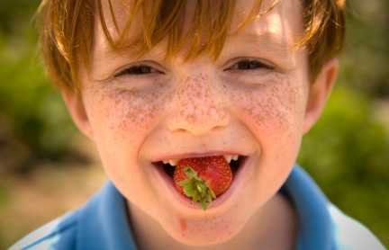 boywithstrawberrysmall.jpg