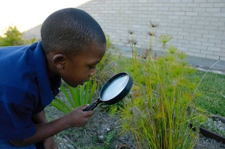 Kid w magnifying glass.jpg