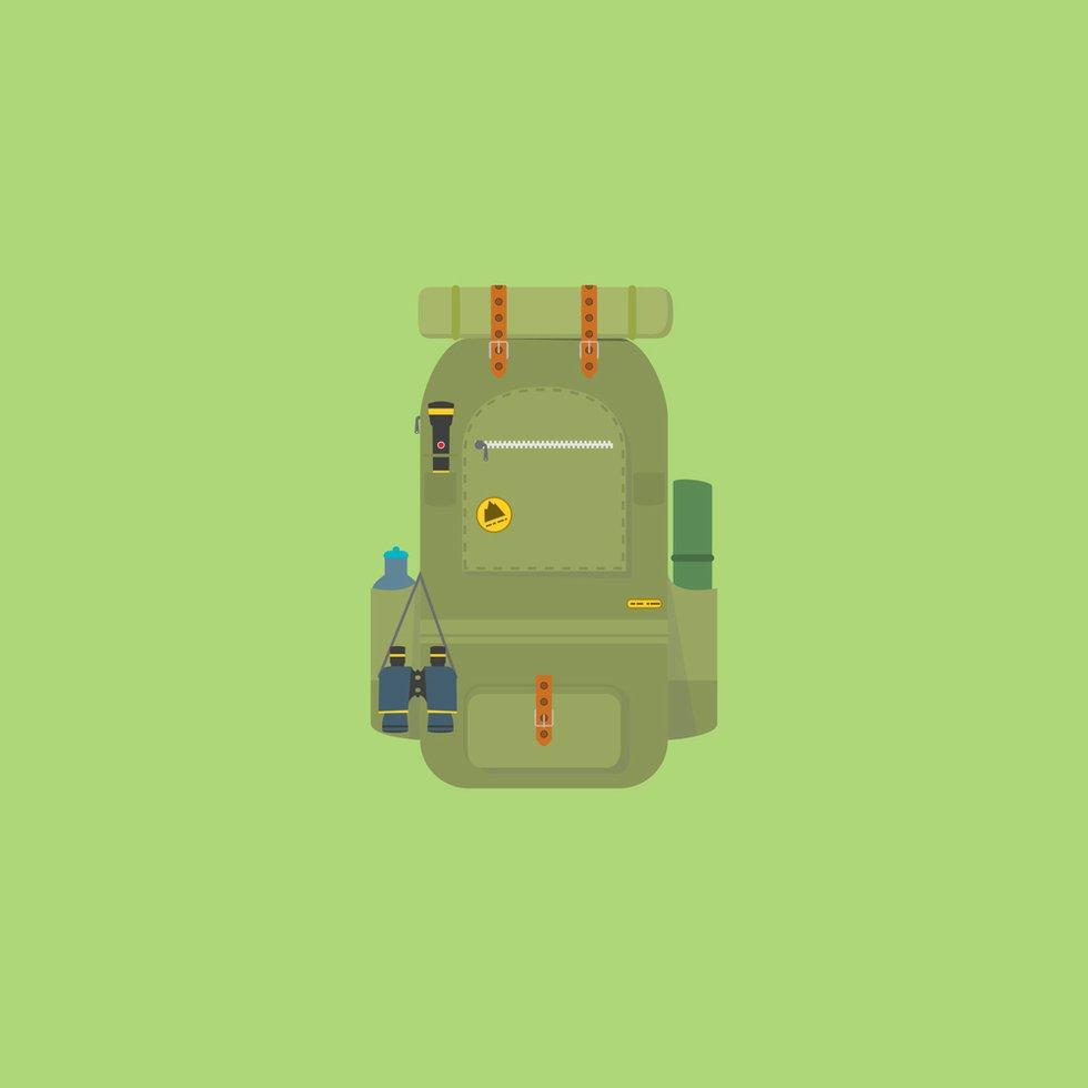 Travel green backpack