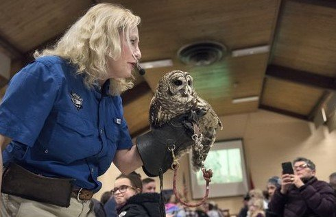 Dale Kernahan Stokes & barred owl  2018.jpg