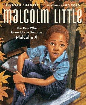 malcolm-little-9781442412163_lg.jpg